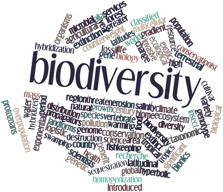 Abstract word cloud for Biodiversity with related tags and terms photo
