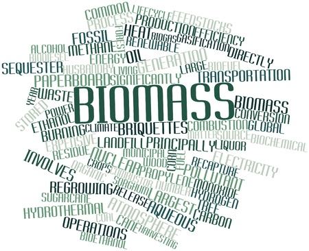residuos organicos: Nube palabra abstracta para la Biomasa con las etiquetas y términos relacionados