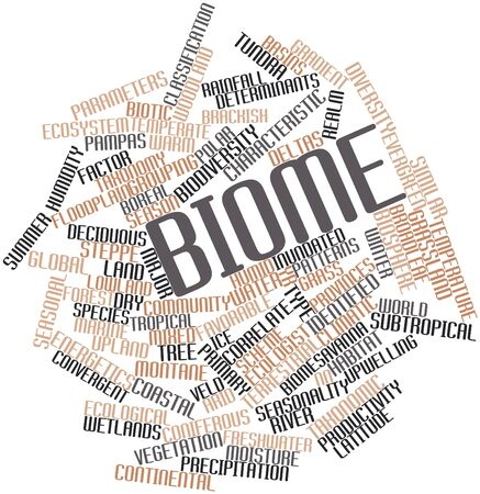 correlate: Abstract word cloud for Biome with related tags and terms Stock Photo