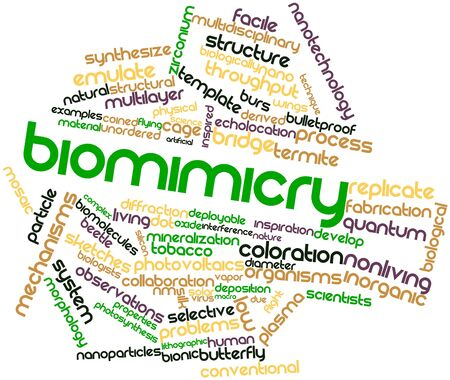 synthesize: Abstract word cloud for Biomimicry with related tags and terms Stock Photo