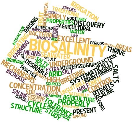 관련 태그 및 용어로 Biosalinity에 대한 추상 단어 구름