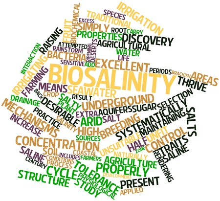 biochemical: Abstract word cloud for Biosalinity with related tags and terms