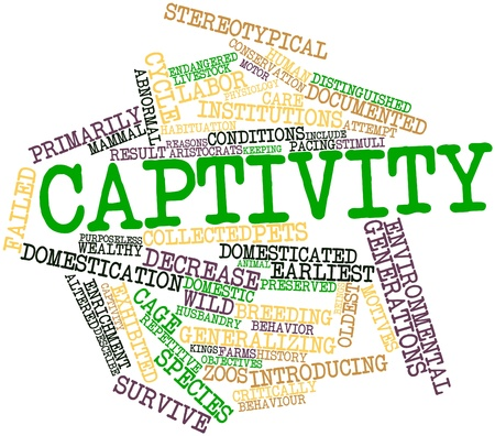 Abstract word cloud for Captivity with related tags and terms photo