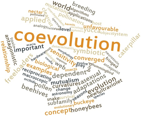 converged: Abstract word cloud for Coevolution with related tags and terms Stock Photo