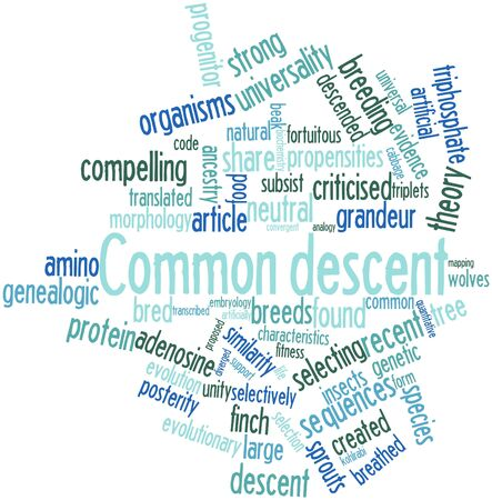 subsist: Abstract word cloud for Common descent with related tags and terms Stock Photo