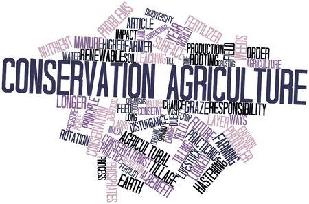 labranza: Nube palabra abstracta para la agricultura de conservaci�n con las etiquetas y t�rminos relacionados Foto de archivo