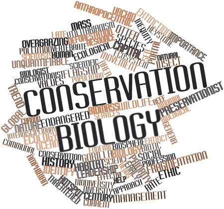 biologist: Abstract word cloud for Conservation biology with related tags and terms Stock Photo