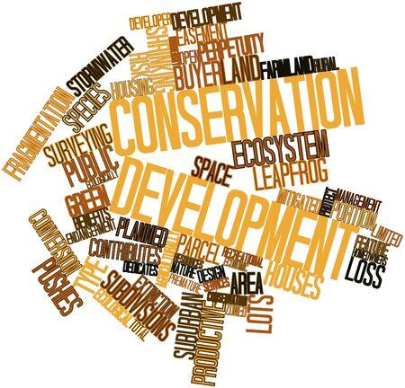 desarrollo económico: Nube palabra abstracta para el desarrollo de la conservación con las etiquetas y términos relacionados