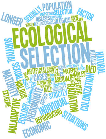 Abstract word cloud for Ecological selection with related tags and terms Stock Photo - 16498491