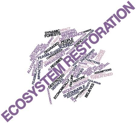 Abstract word cloud for Ecosystem restoration with related tags and terms Stock Photo - 16498400