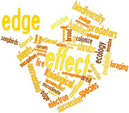 Abstract word cloud for Edge effect with related tags and terms Stock Photo