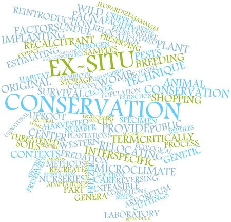 cuttings: Abstract word cloud for Ex-situ conservation with related tags and terms
