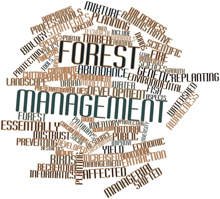 environmental awareness: Abstract word cloud for Forest management with related tags and terms Stock Photo