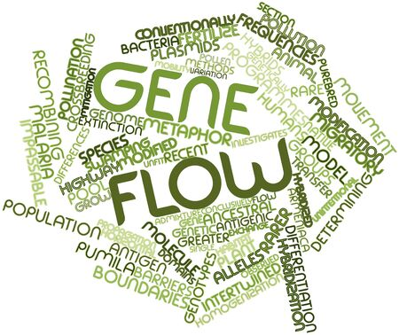 alleles: Abstract word cloud for Gene flow with related tags and terms Stock Photo