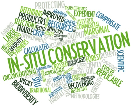 constraints: Abstract word cloud for In-situ conservation with related tags and terms