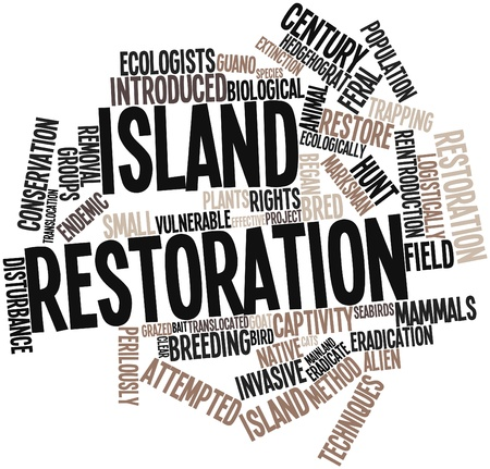 restoration: Abstract word cloud for Island restoration with related tags and terms Stock Photo