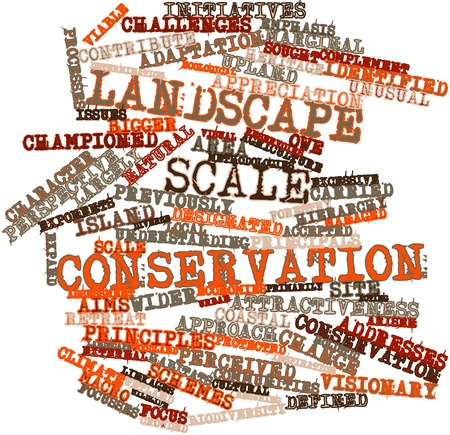 initiatives: Abstract word cloud for Landscape scale conservation with related tags and terms