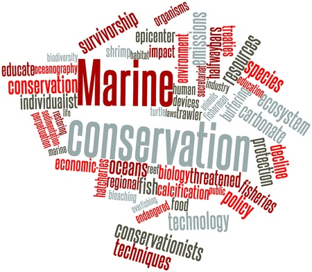 resilience: Abstract word cloud for Marine conservation with related tags and terms Stock Photo