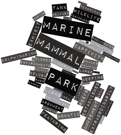 cetaceans: Abstract word cloud for Marine mammal park with related tags and terms