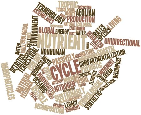 regulated: Abstract word cloud for Nutrient cycle with related tags and terms