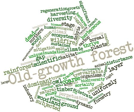 sequestration: Abstract word cloud for Old-growth forest with related tags and terms Stock Photo