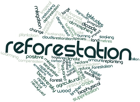 hectare: Abstract word cloud for Reforestation with related tags and terms