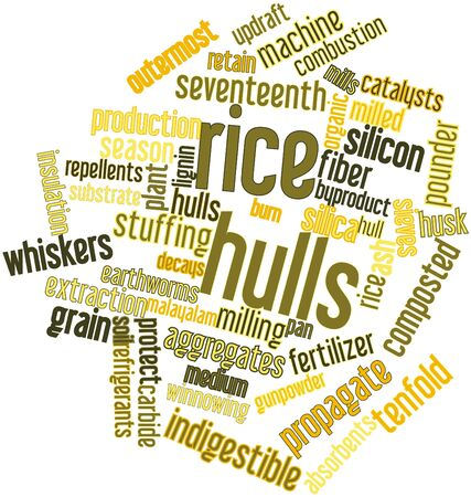 Abstract word cloud for Rice hulls with related tags and terms