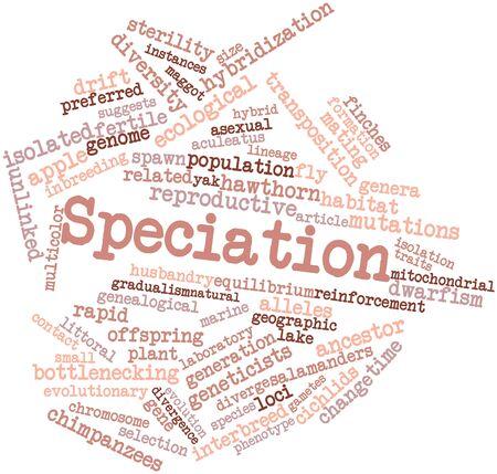 関連するタグと用語スペシエーションのための抽象的な単語クラウド