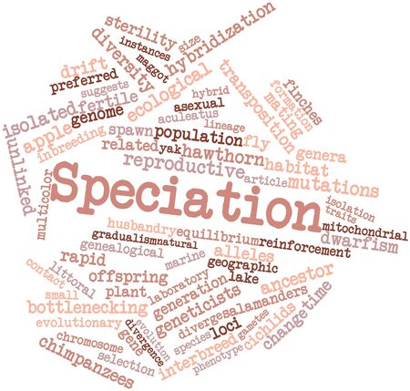 Abstract word cloud for Speciation with related tags and terms Stock Photo - 16498763