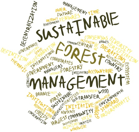 forest management: Abstract word cloud for Sustainable forest management with related tags and terms Stock Photo
