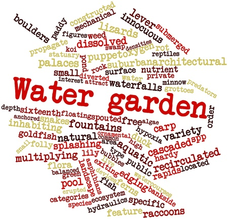 common carp: Abstract word cloud for Water garden with related tags and terms