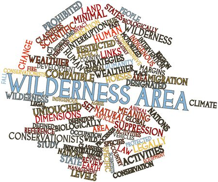 Abstract word cloud for Wilderness area with related tags and terms Stock Photo - 16499301