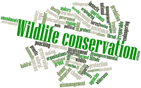 endangering: Abstract word cloud for Wildlife conservation with related tags and terms