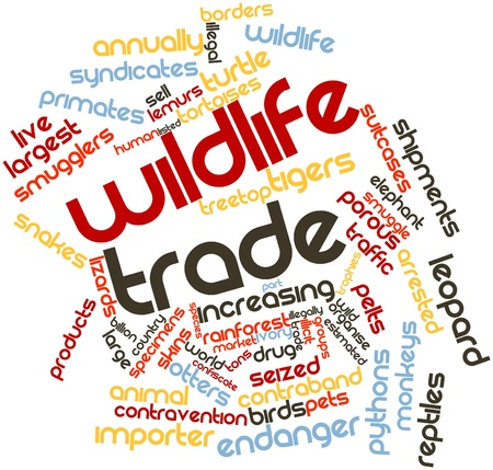 importer: Abstract word cloud for Wildlife trade with related tags and terms