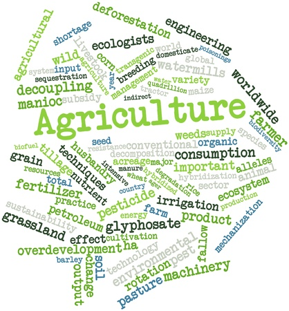 hybridization: Abstract word cloud for Agriculture with related tags and terms Stock Photo