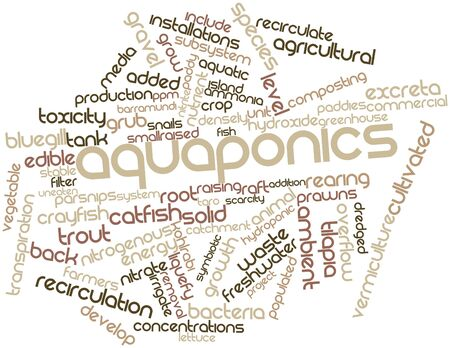successes: Abstract word cloud for Aquaponics with related tags and terms Stock Photo