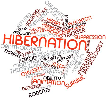Abstract word cloud for Hibernation with related tags and terms Stock Photo - 16499921