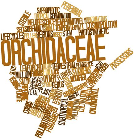 fused: Abstract word cloud for Orchidaceae with related tags and terms