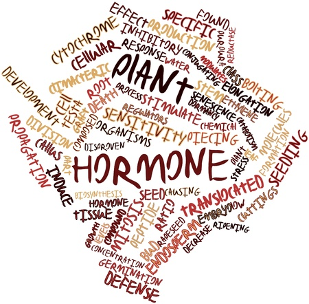 inhibitory: Abstract word cloud for Plant hormone with related tags and terms