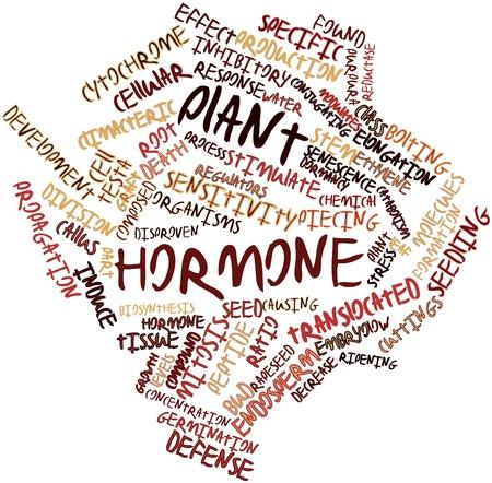 elongacion: Nube palabra abstracta para la hormona de la planta con las etiquetas y términos relacionados