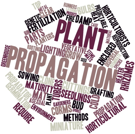 asexual: Abstract word cloud for Plant propagation with related tags and terms
