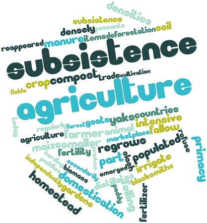 emerged: Abstract word cloud for Subsistence agriculture with related tags and terms