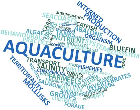 million fish: Abstract word cloud for Aquaculture with related tags and terms