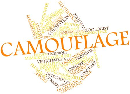 tarsal: Abstract word cloud for Camouflage with related tags and terms