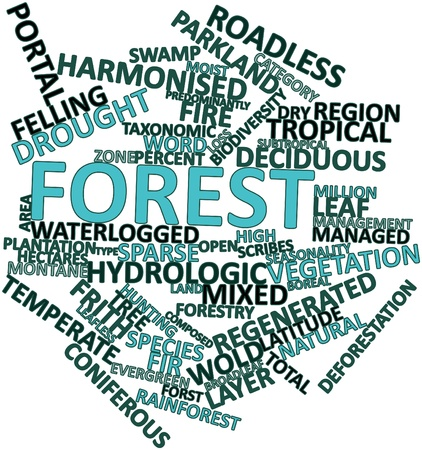 seasonality: Abstract word cloud for Forest with related tags and terms