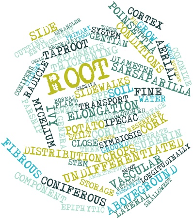 genera: Abstract word cloud for Root with related tags and terms