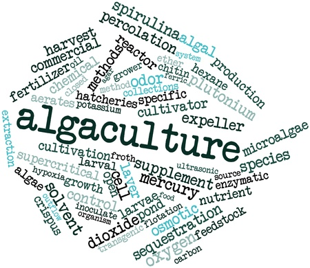 outflow: Abstract word cloud for Algaculture with related tags and terms