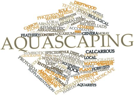 supplementation: Abstract word cloud for Aquascaping with related tags and terms