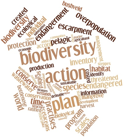 groundwater: Abstract word cloud for Biodiversity action plan with related tags and terms Stock Photo
