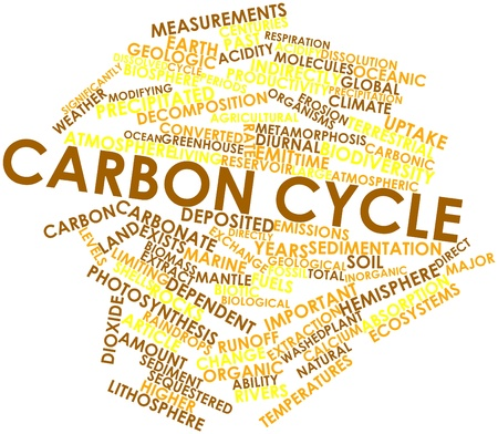 diurnal: Abstract word cloud for Carbon cycle with related tags and terms